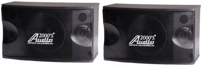 300 Watts  Loudspeaker Full-range Two-way